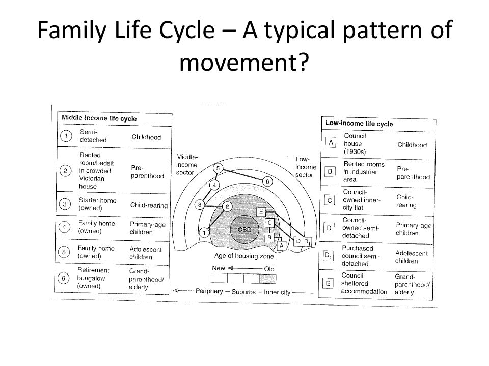 Family Life Cycle – A typical pattern of movement?