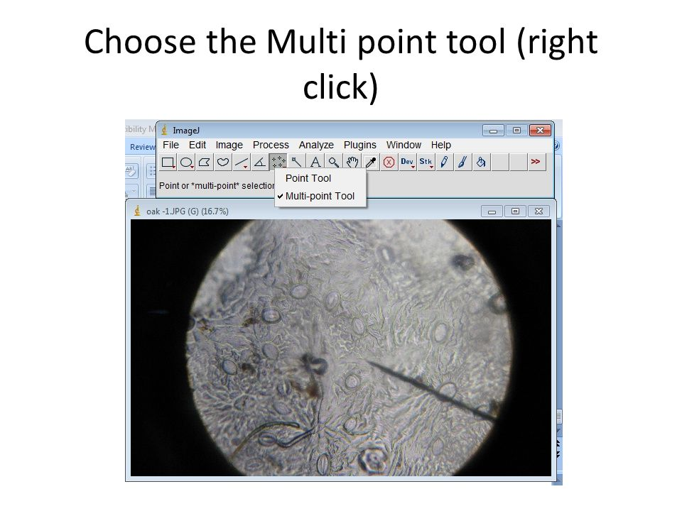 Choose the Multi point tool (right click)