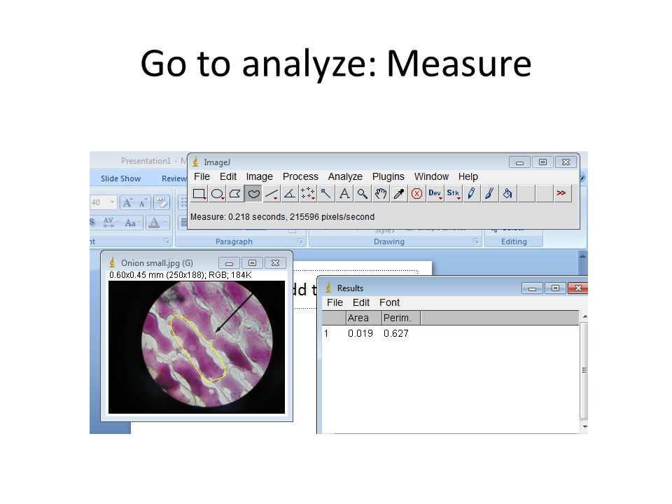 Go to analyze: Measure