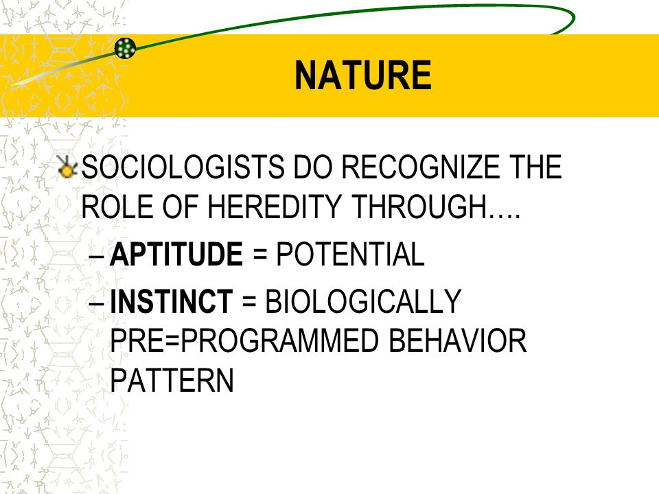 Personality Development How could each of these factors affect personality.