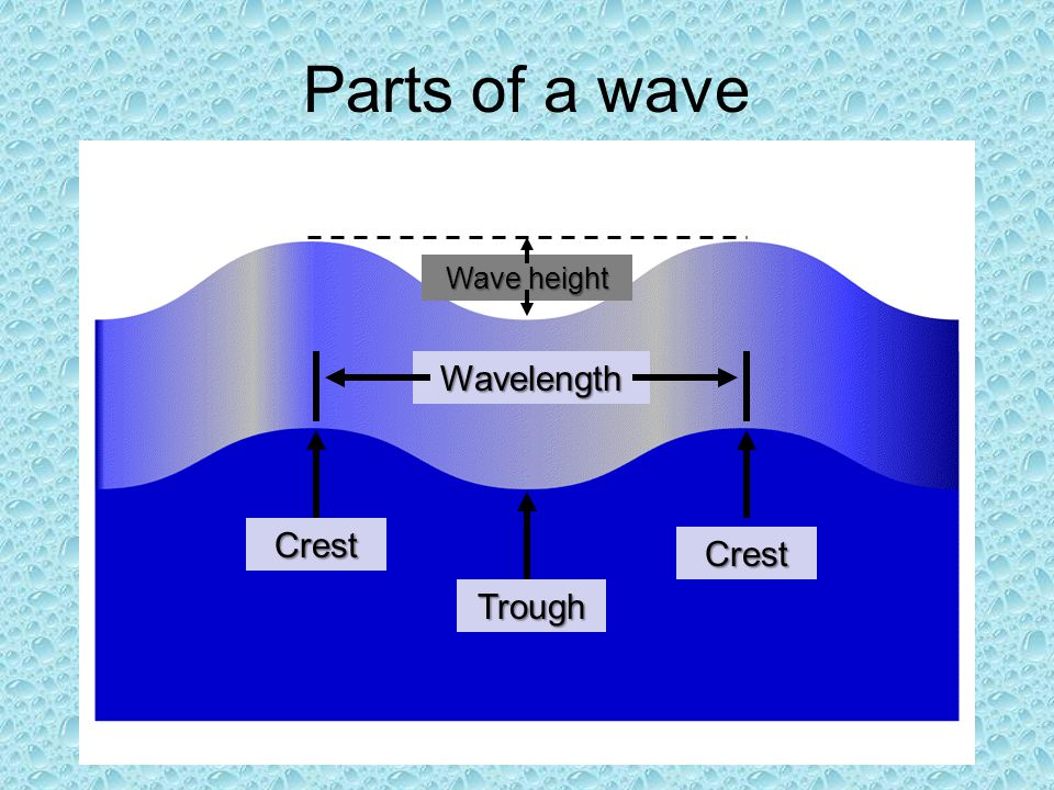Parts of a wave Crest Crest Trough Wavelength Wave height