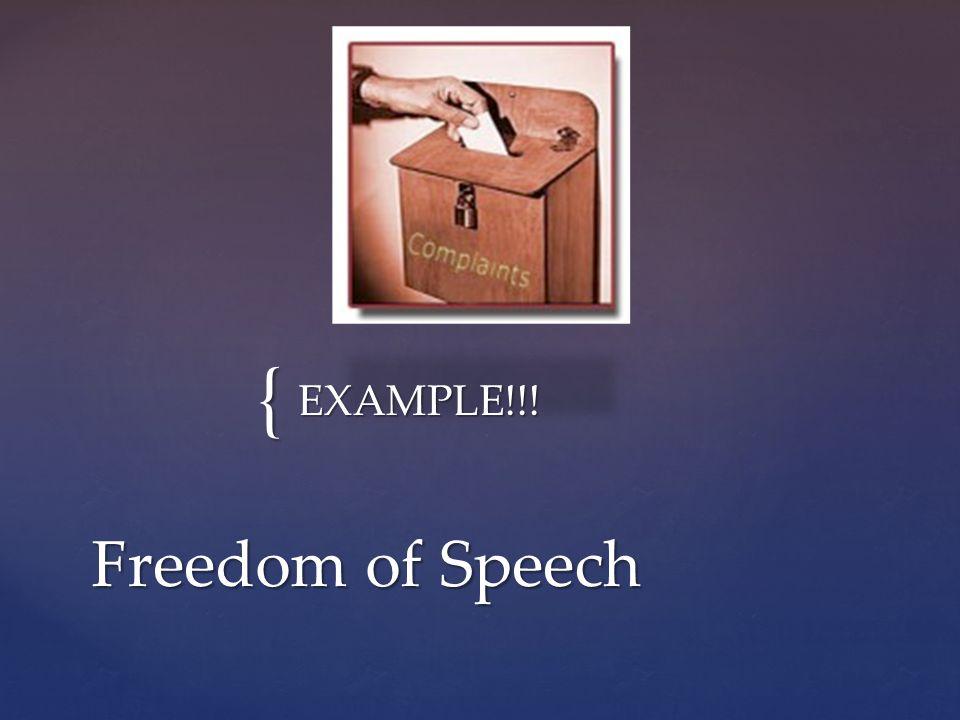 { EXAMPLE!!! Freedom of Speech