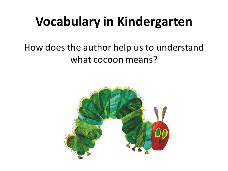 Vocabulary in Kindergarten How does the author help us to understand what cocoon means?