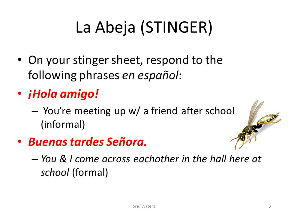 La Abeja (STINGER) On your stinger sheet, respond to the following phrases en español: ¡Hola amigo.
