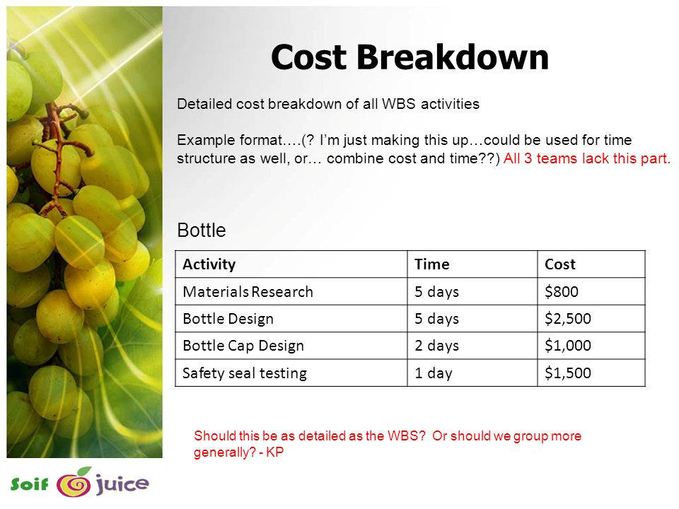 17 Detailed cost breakdown of all WBS activities Example format….(? I'm just making this up…could be used for time structure as well, or… combine cost