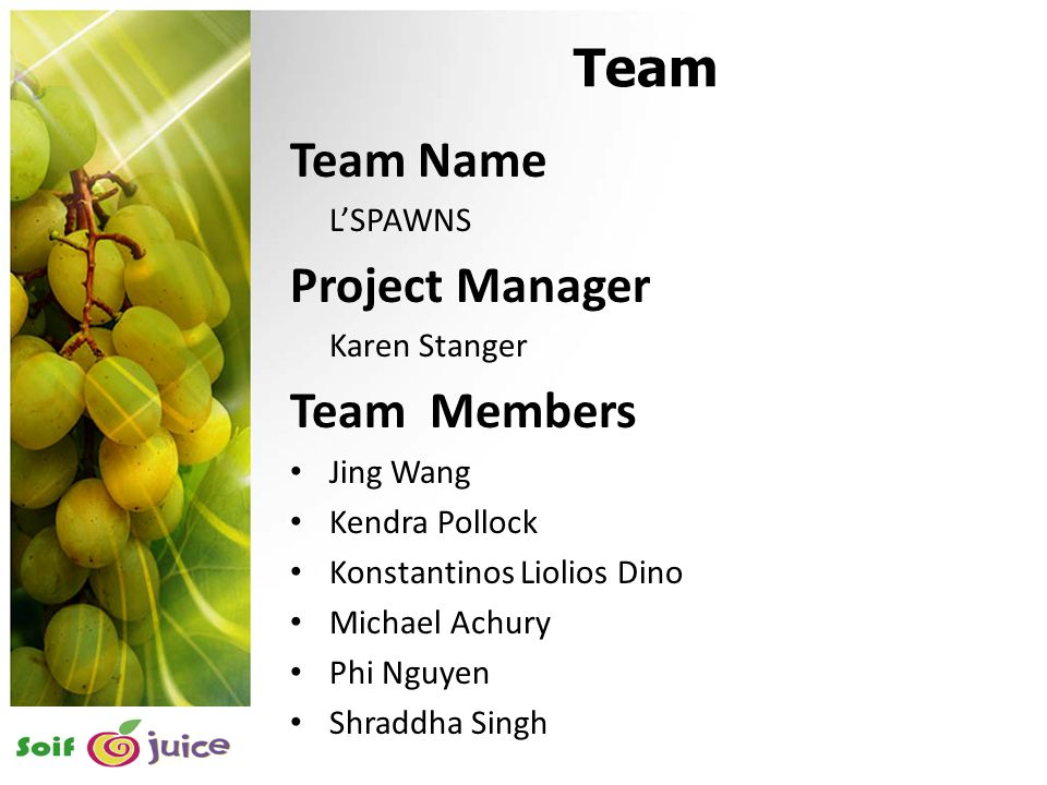 2 Team Team Name L'SPAWNS Project Manager Karen Stanger Team Members Jing Wang Kendra Pollock Konstantinos Liolios Dino Michael Achury Phi Nguyen Shraddha Singh