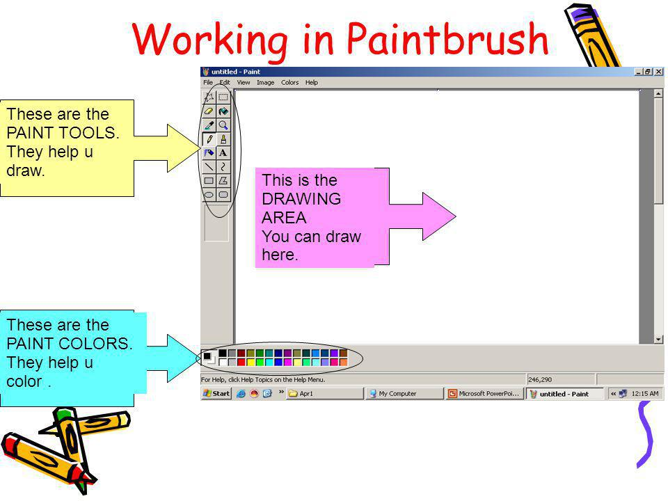 Working in Paintbrush These are the PAINT TOOLS. They help u draw.