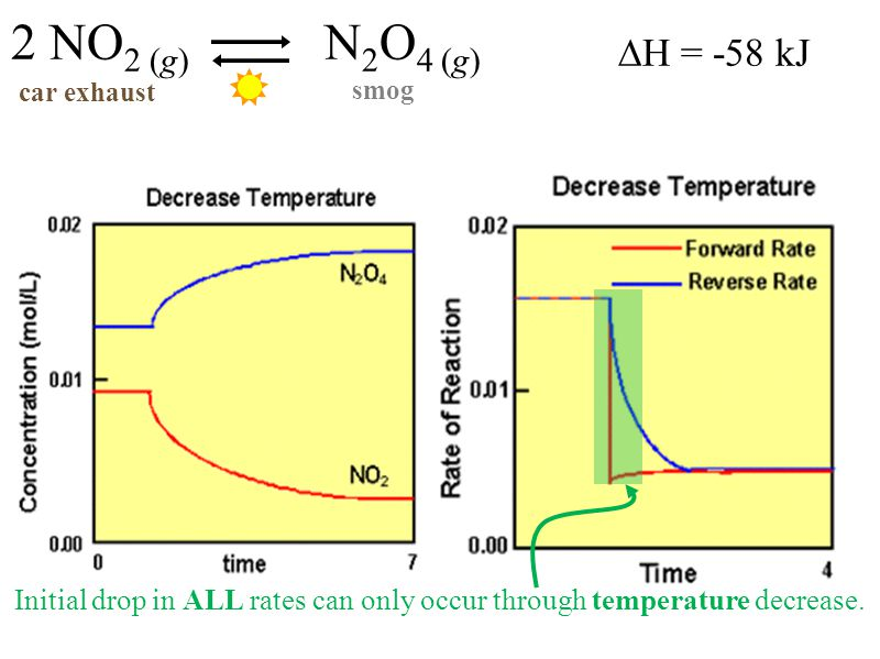 ∆H = -58 kJ 2 NO 2 (g) N 2 O 4 (g) car exhaust smog Initial drop in ALL rates can only occur through temperature decrease.
