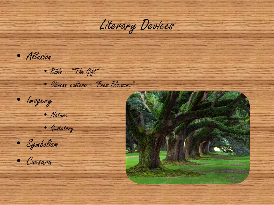 """Literary Devices Allusion Bible – """"""""The Gift"""" Chinese culture – """"From Blossoms"""" Imagery Nature Gustatory Symbolism Caesura"""