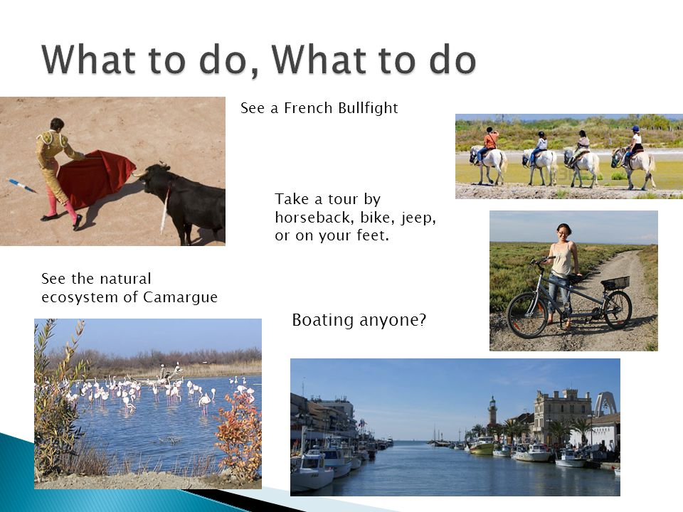 See a French Bullfight Take a tour by horseback, bike, jeep, or on your feet. See the natural ecosystem of Camargue Boating anyone?