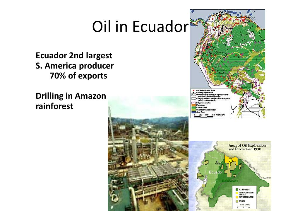 Oil in Ecuador Ecuador 2nd largest S. America producer 70% of exports Drilling in Amazon rainforest