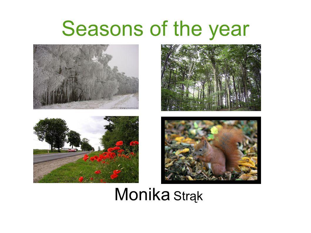 Seasons of the year Monika Strąk