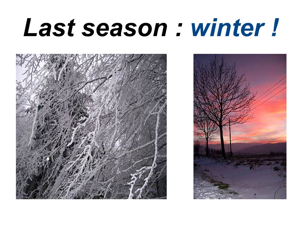 Last season : winter !
