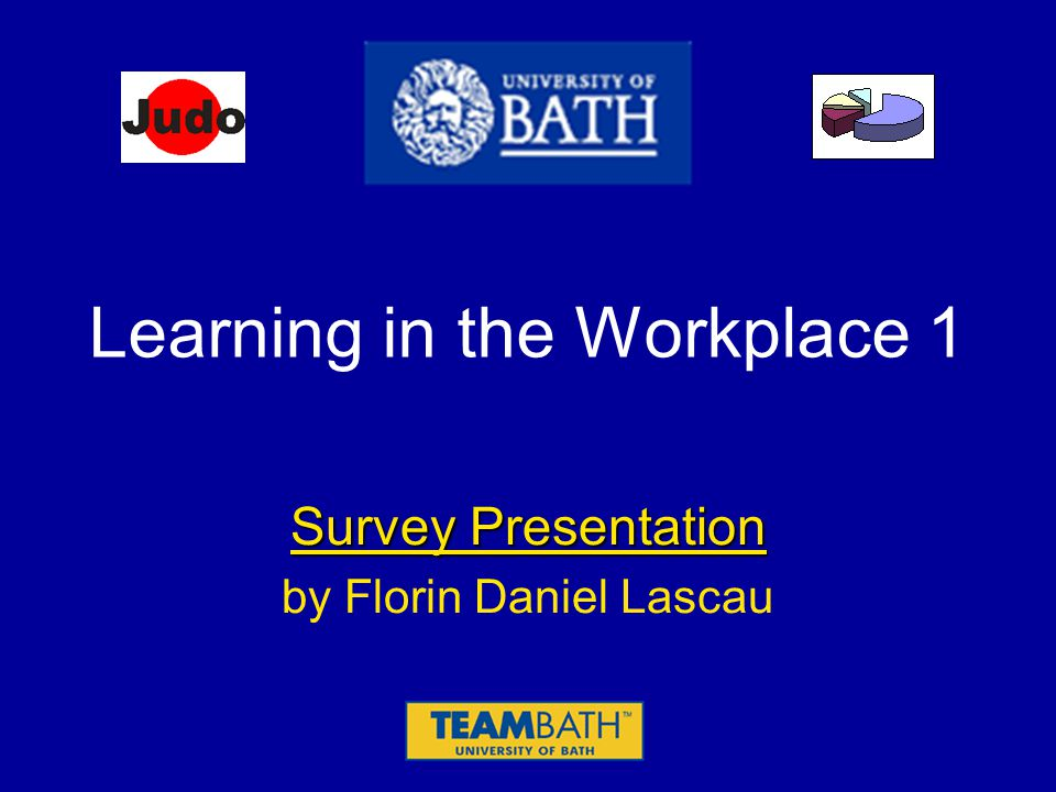 Learning in the Workplace 1 Survey Presentation by Florin Daniel Lascau