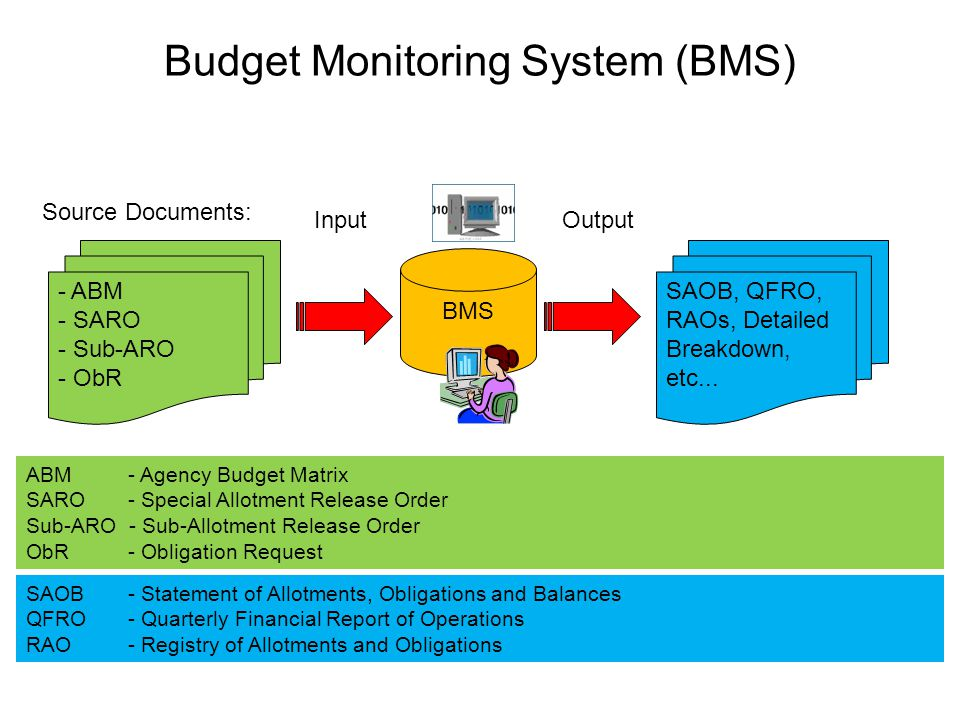 Budget Monitoring System (BMS) - ABM - SARO - Sub-ARO - ObR Source Documents: SAOB, QFRO, RAOs, Detailed Breakdown, etc... OutputInput ABM - Agency Bu