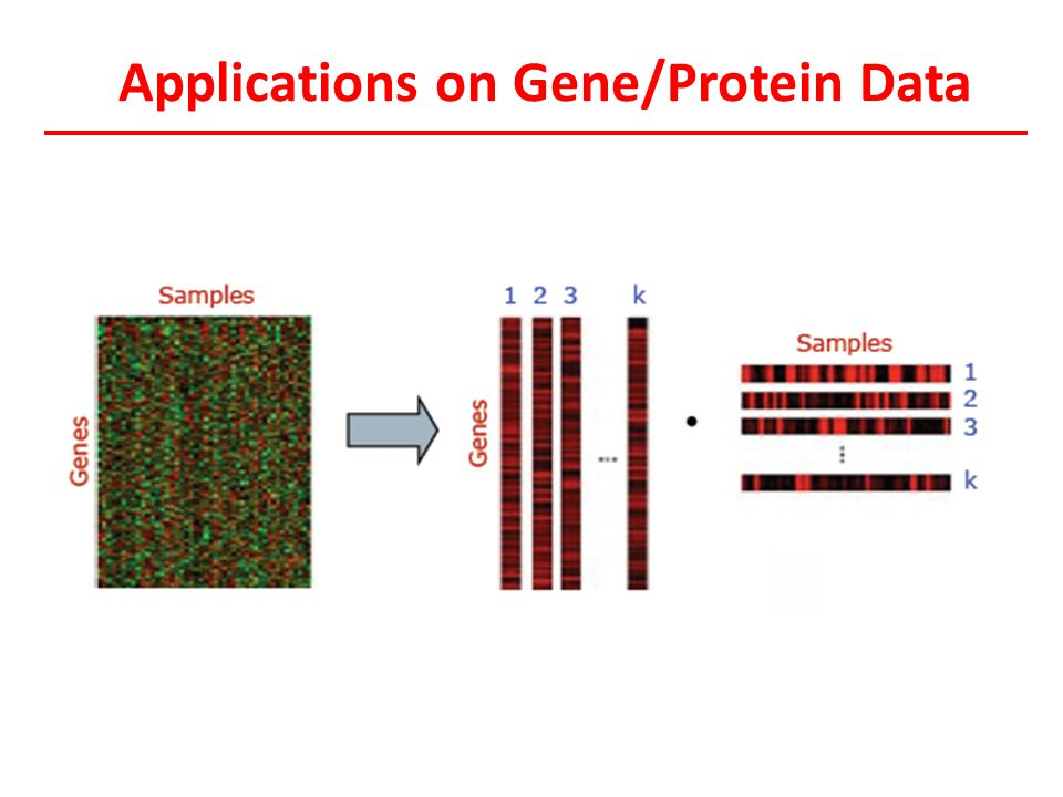 Applications on Gene/Protein Data