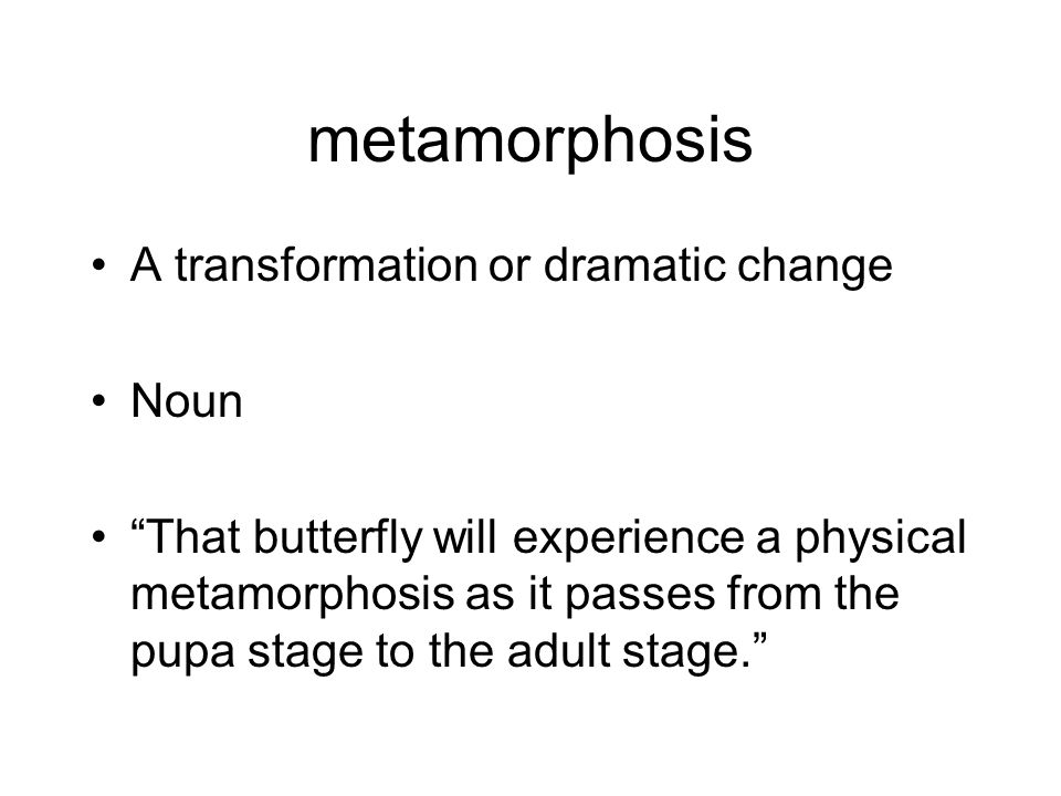 metamorphosis A transformation or dramatic change Noun That butterfly will experience a physical metamorphosis as it passes from the pupa stage to the adult stage.