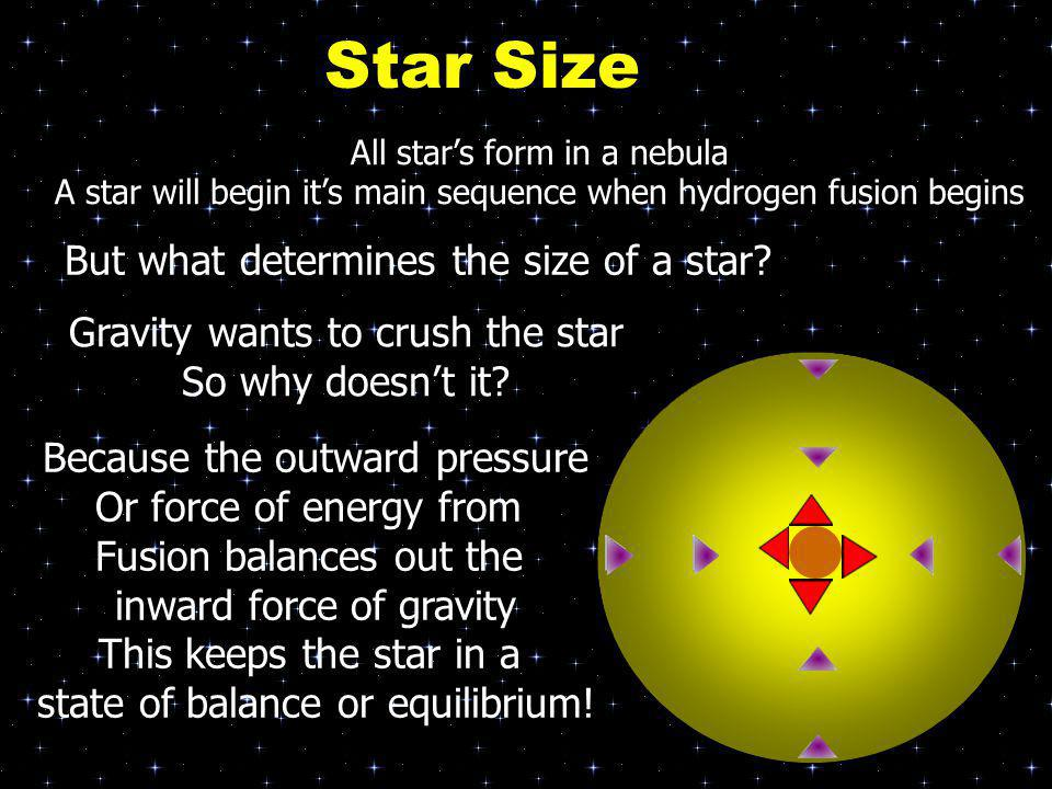 All star's form in a nebula A star will begin it's main sequence when hydrogen fusion begins But what determines the size of a star? Gravity wants to