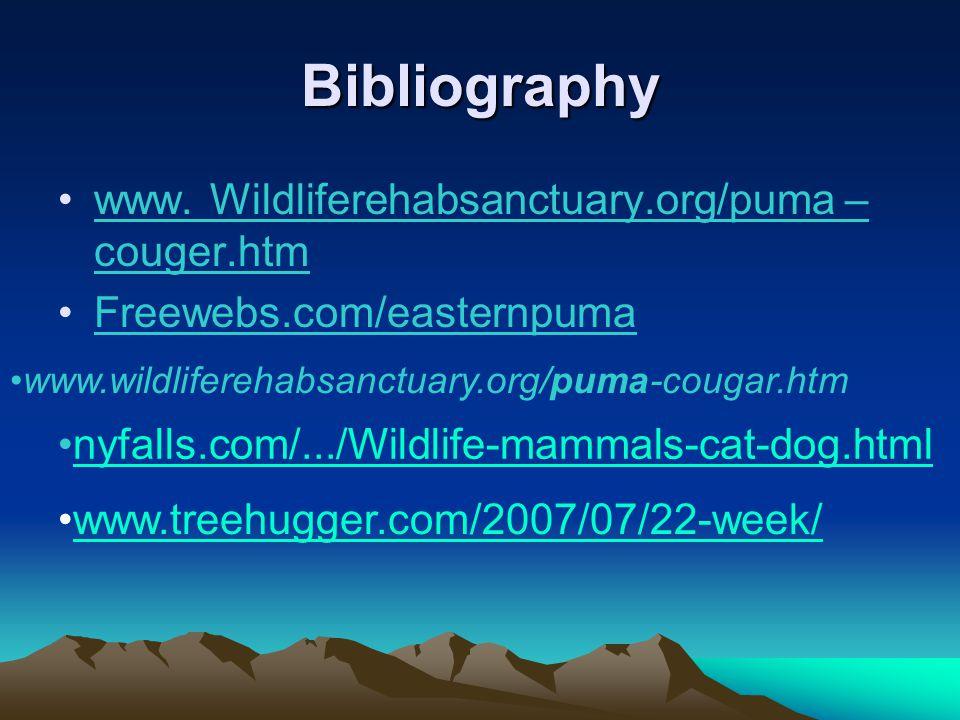 Bibliography www.