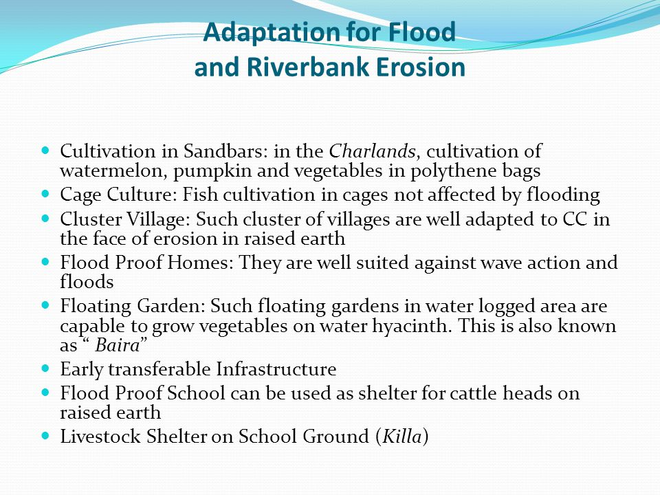 Adaptation for Flood and Riverbank Erosion Cultivation in Sandbars: in the Charlands, cultivation of watermelon, pumpkin and vegetables in polythene b