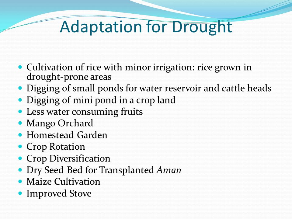 Adaptation for Drought Cultivation of rice with minor irrigation: rice grown in drought-prone areas Digging of small ponds for water reservoir and cat