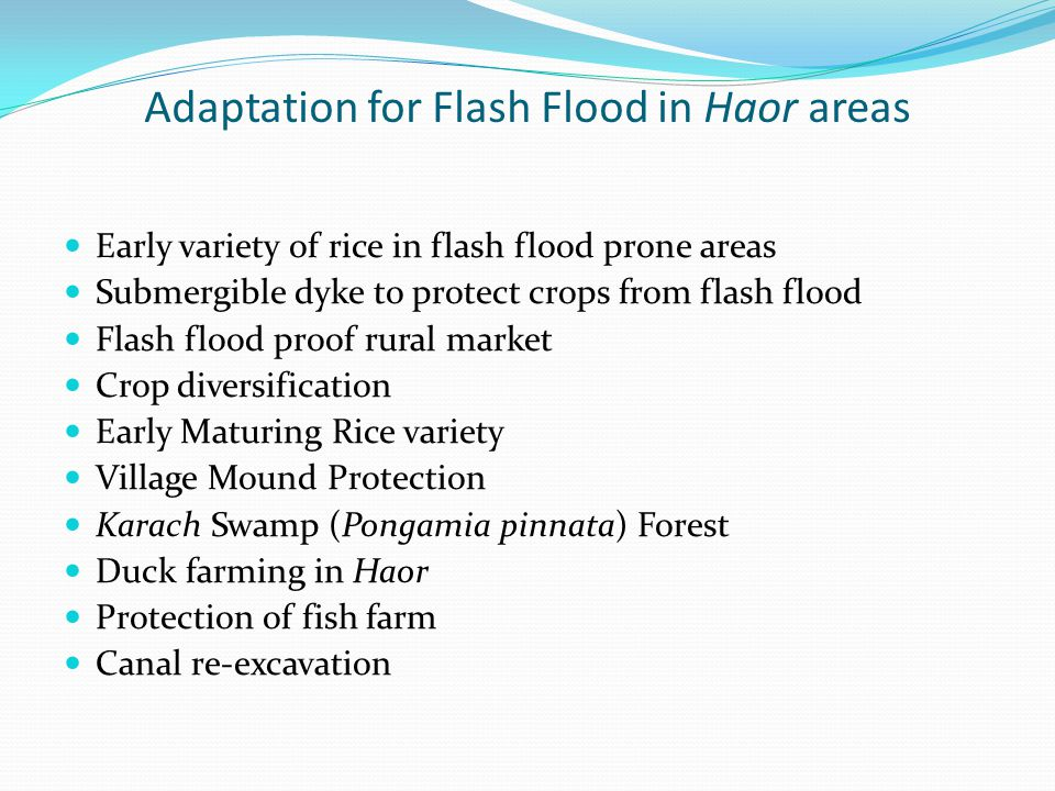 Adaptation for Flash Flood in Haor areas Early variety of rice in flash flood prone areas Submergible dyke to protect crops from flash flood Flash flo