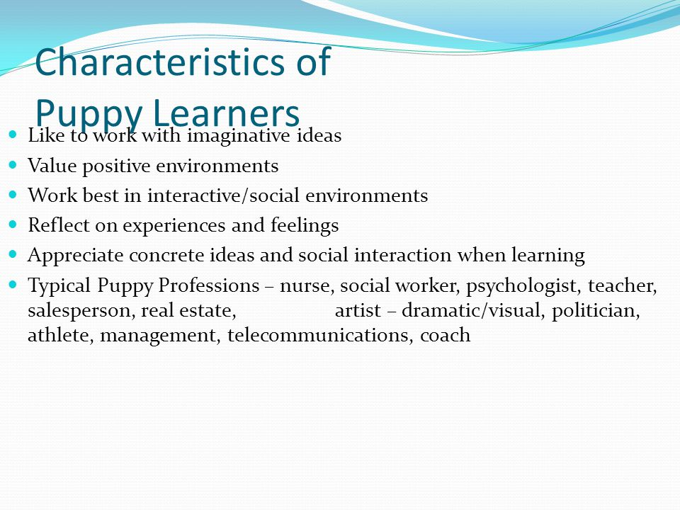 Characteristics of Puppy Learners Like to work with imaginative ideas Value positive environments Work best in interactive/social environments Reflect