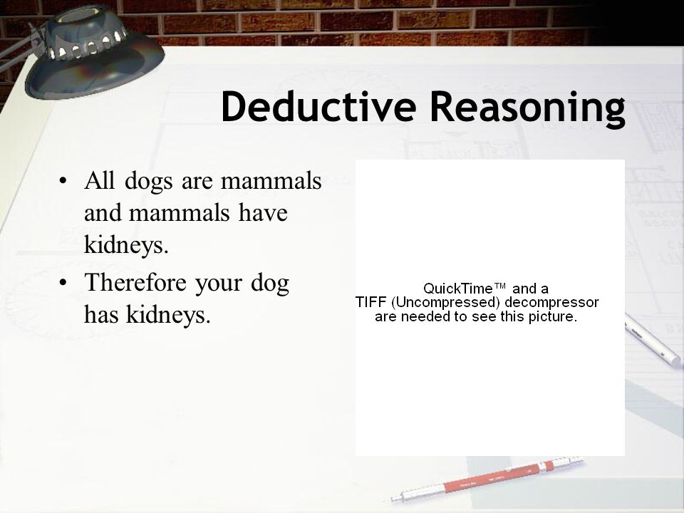 Deductive Reasoning All dogs are mammals and mammals have kidneys. Therefore your dog has kidneys.