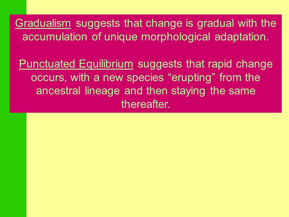 Gradualism suggests that change is gradual with the accumulation of unique morphological adaptation.