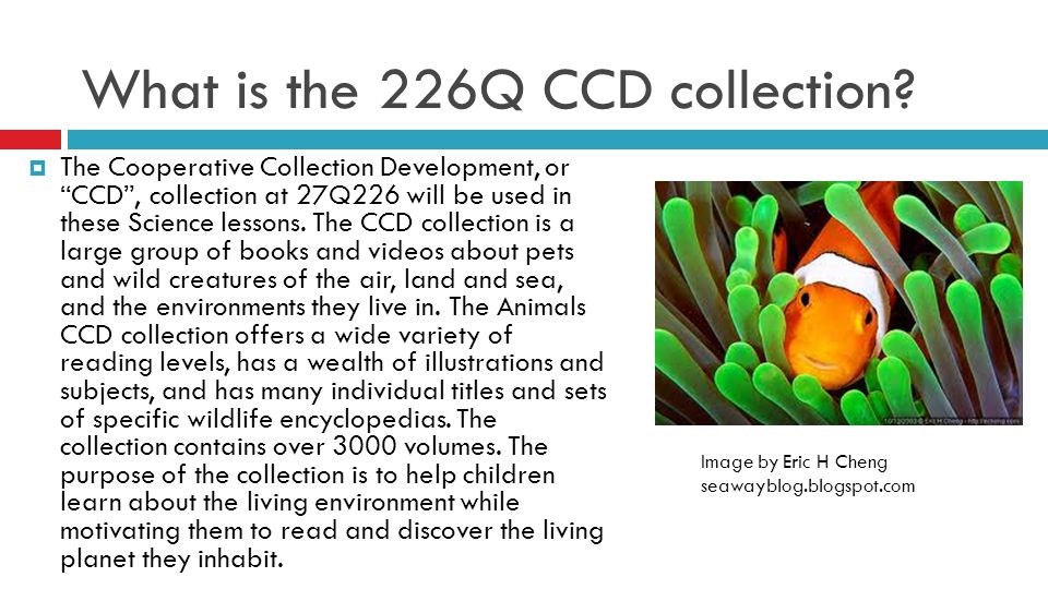 What is the 226Q CCD collection.