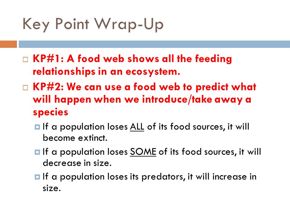 Key Point Wrap-Up  KP#1: A food web shows all the feeding relationships in an ecosystem.  KP#2: We can use a food web to predict what will happen wh