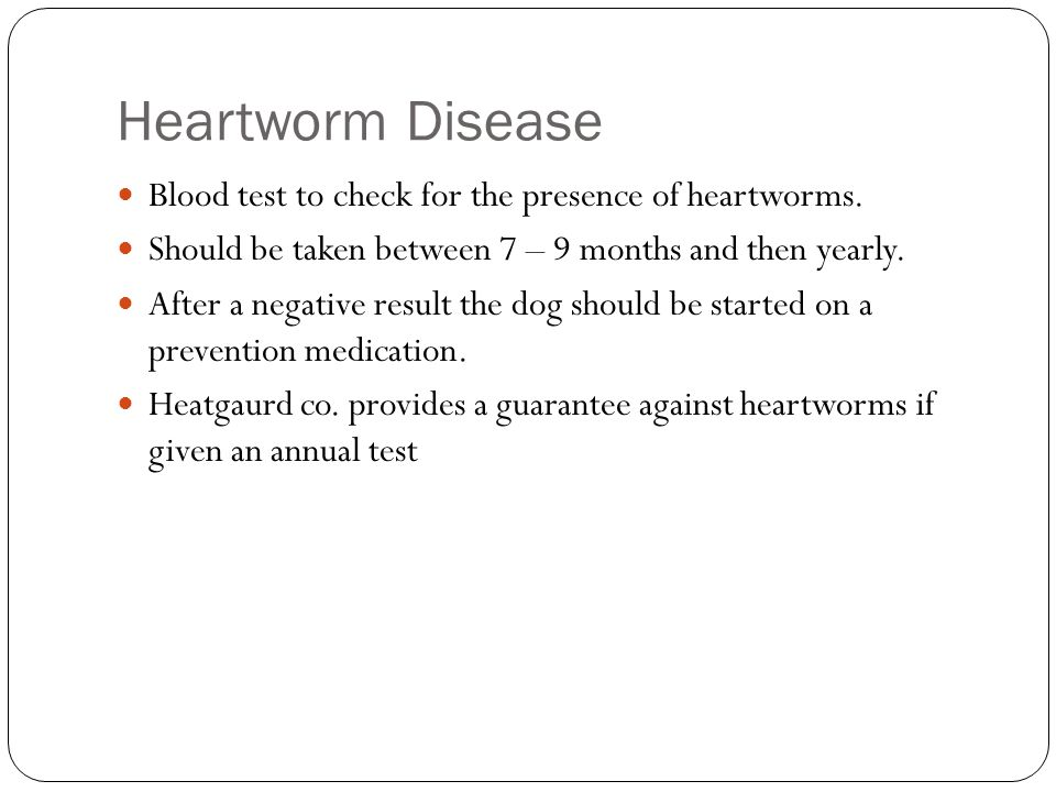 Heartworm Disease Blood test to check for the presence of heartworms.