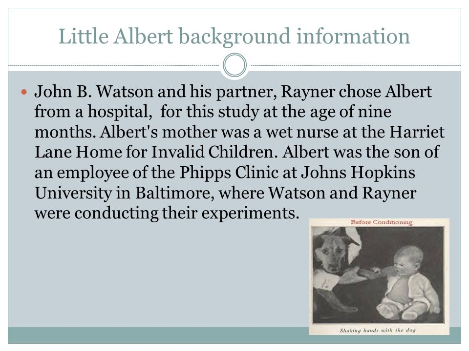 Little Albert background information John B. Watson and his partner, Rayner chose Albert from a hospital, for this study at the age of nine months. Al