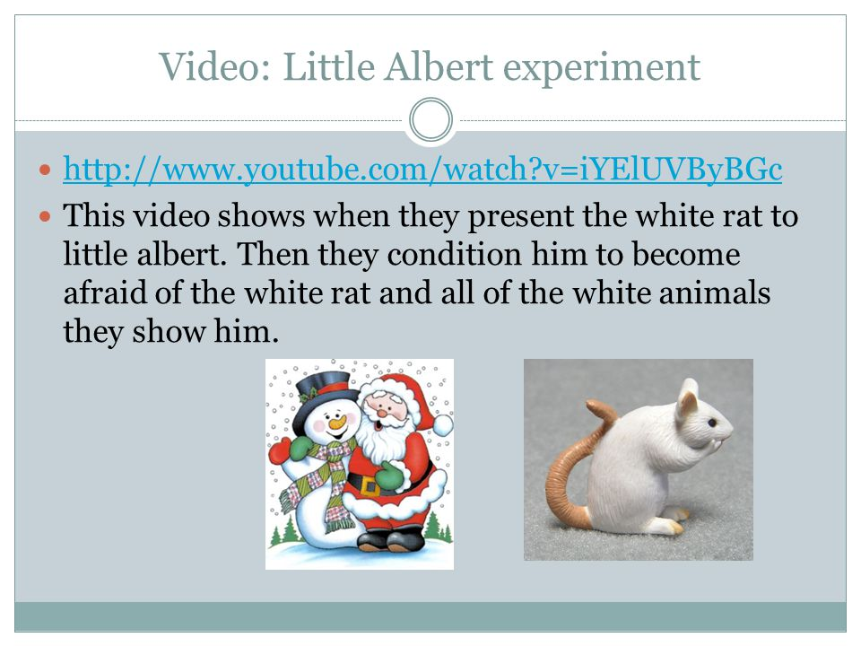 Video: Little Albert experiment http://www.youtube.com/watch v=iYElUVByBGc This video shows when they present the white rat to little albert.