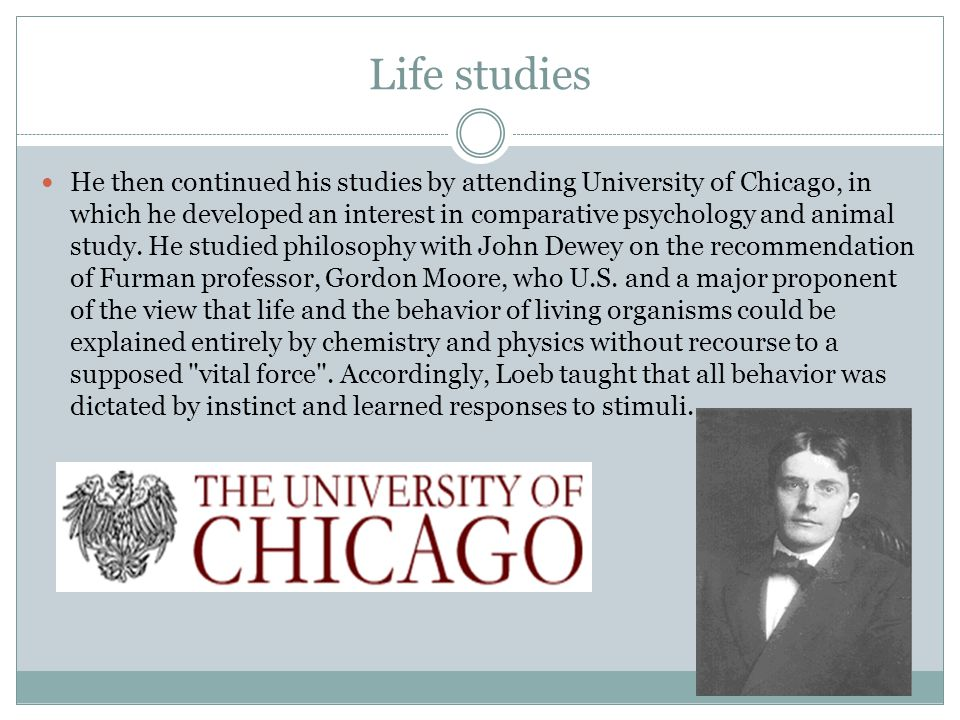 Life studies He then continued his studies by attending University of Chicago, in which he developed an interest in comparative psychology and animal