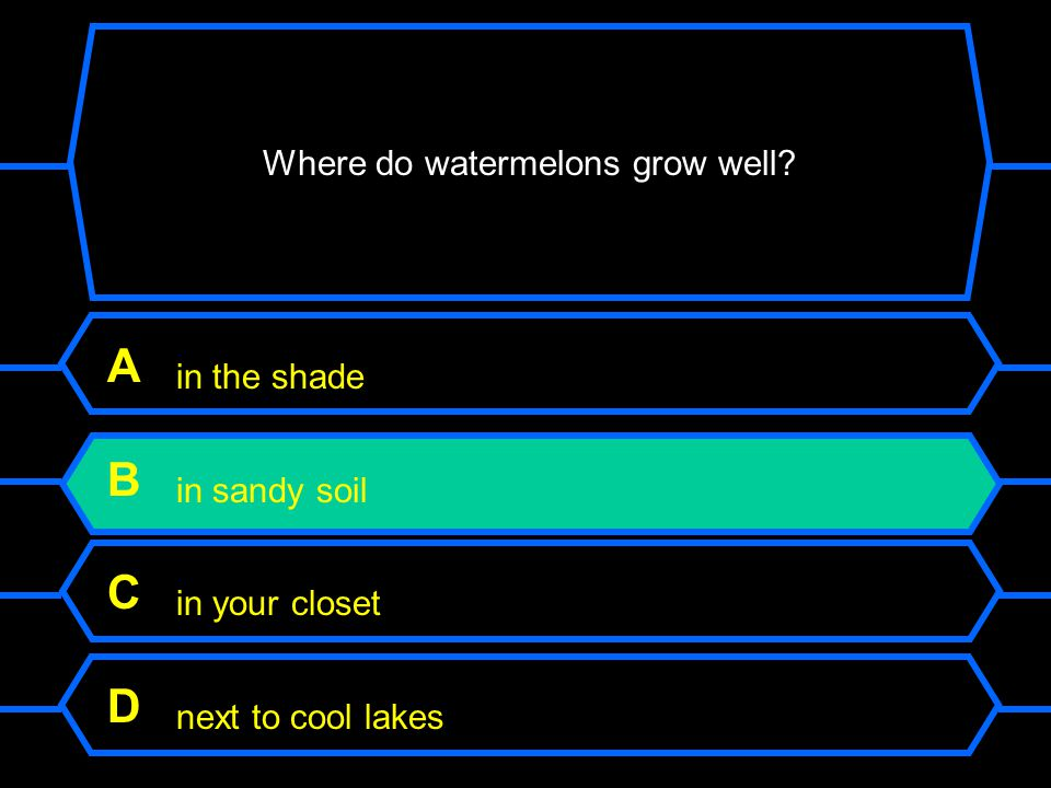 Where do watermelons grow well.