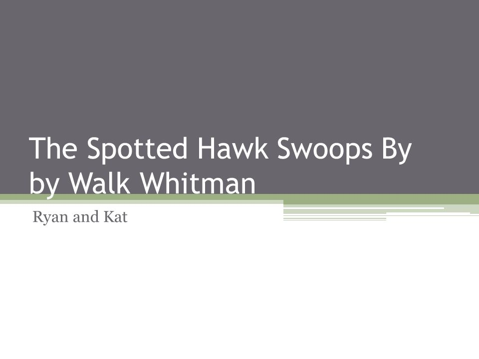 The Spotted Hawk Swoops By by Walk Whitman Ryan and Kat