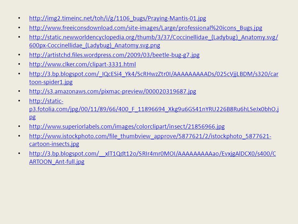http://img2.timeinc.net/toh/i/g/1106_bugs/Praying-Mantis-01.jpg http://www.freeiconsdownload.com/site-images/Large/professional%20icons_Bugs.jpg http: