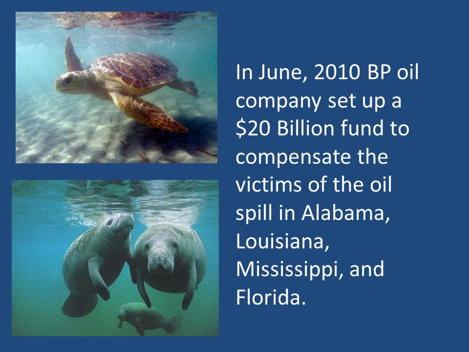 In June, 2010 BP oil company set up a $20 Billion fund to compensate the victims of the oil spill in Alabama, Louisiana, Mississippi, and Florida.