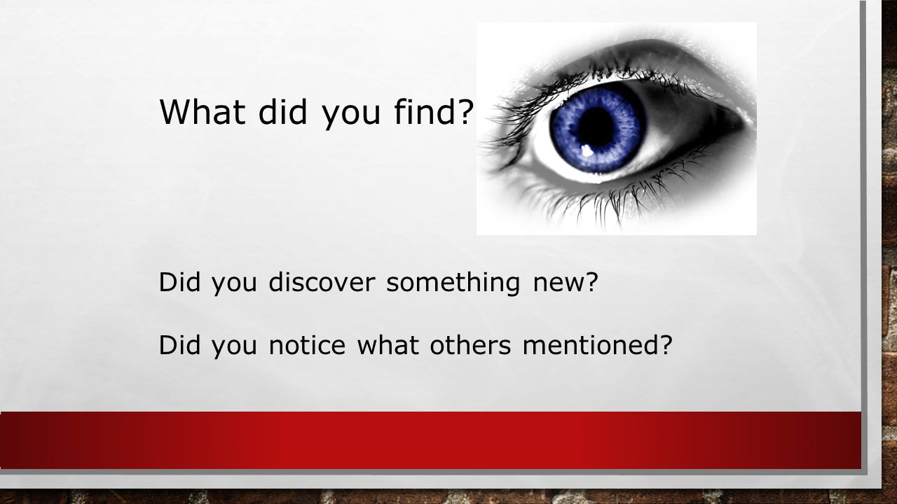 What did you find Did you discover something new Did you notice what others mentioned