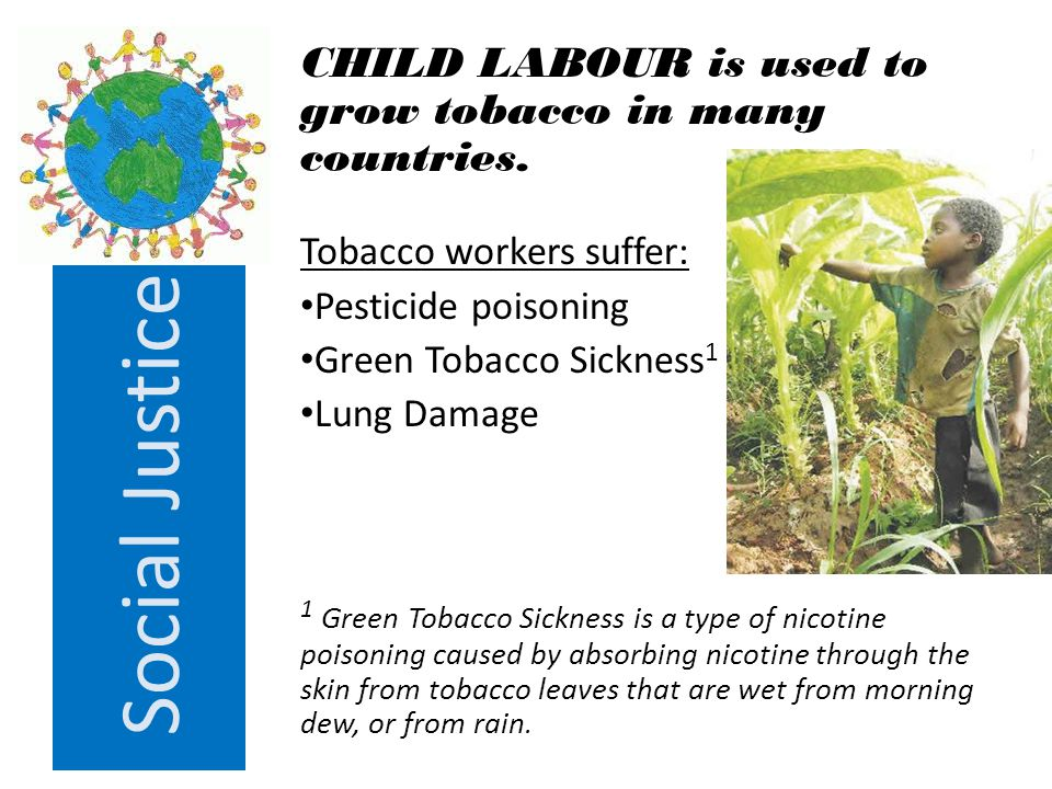 Social Justice Tobacco kills people at the height of their productivity, depriving families of breadwinners & depriving nations of a healthy workforce.
