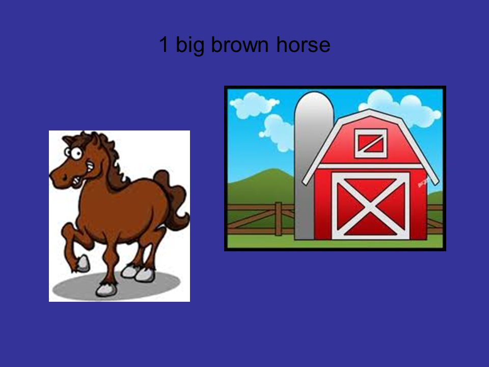 1 big brown horse