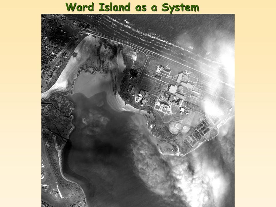 Ward Island as a System