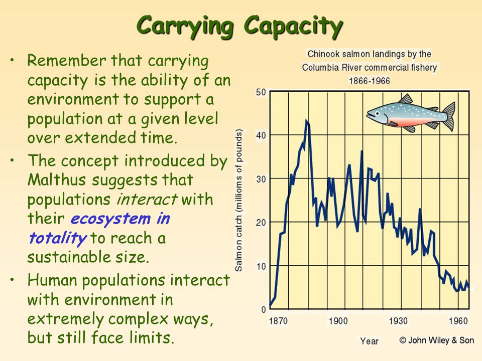 Carrying Capacity Remember that carrying capacity is the ability of an environment to support a population at a given level over extended time.