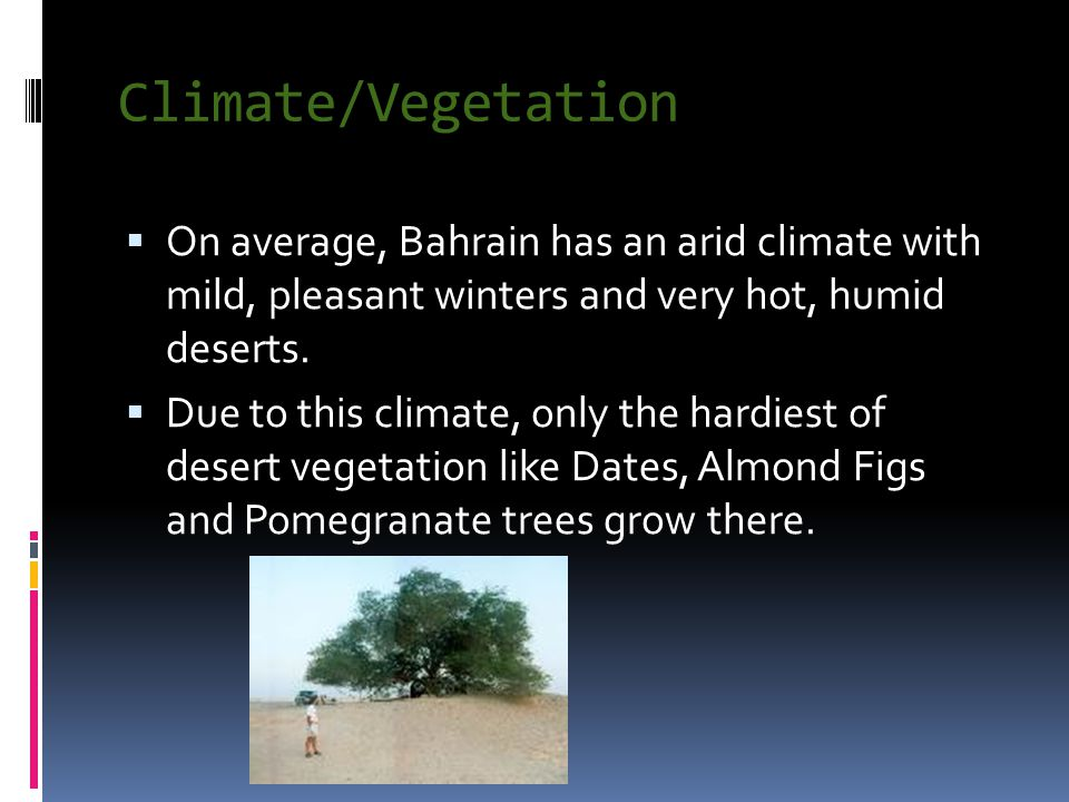 Climate/Vegetation  On average, Bahrain has an arid climate with mild, pleasant winters and very hot, humid deserts.