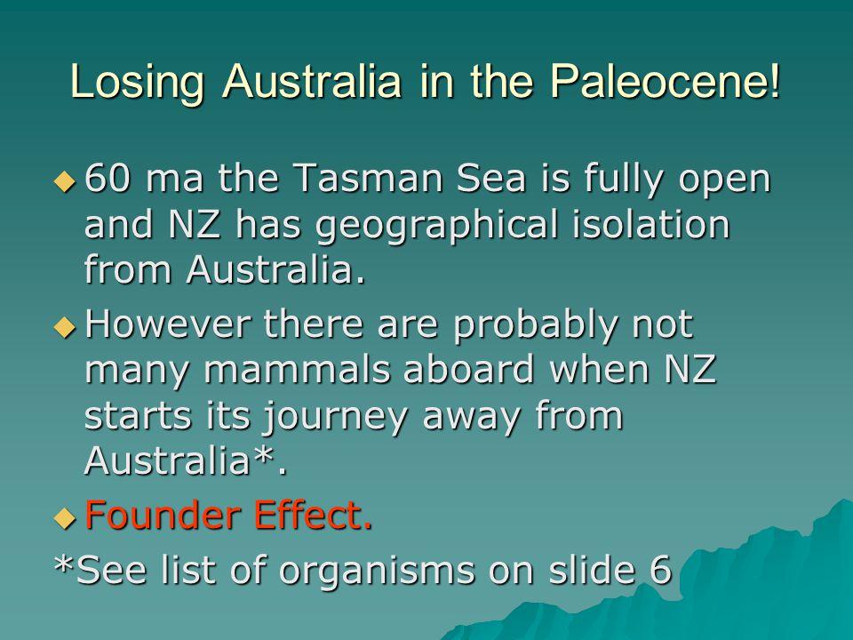 Losing Australia in the Paleocene.
