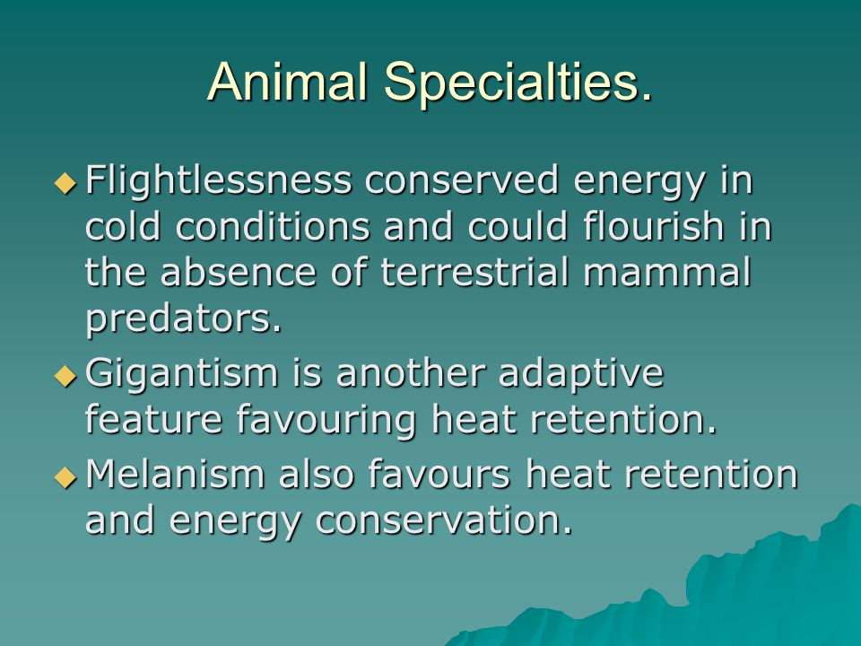 Animal Specialties.