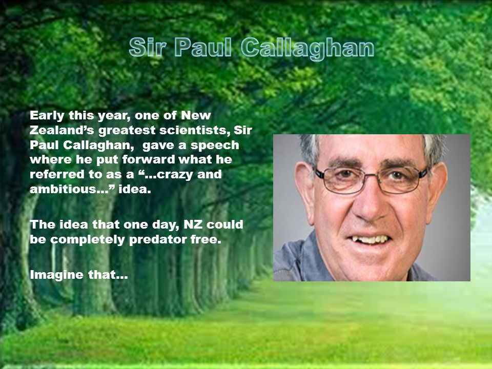 Early this year, one of New Zealand's greatest scientists, Sir Paul Callaghan, gave a speech where he put forward what he referred to as a ...crazy and ambitious... idea.