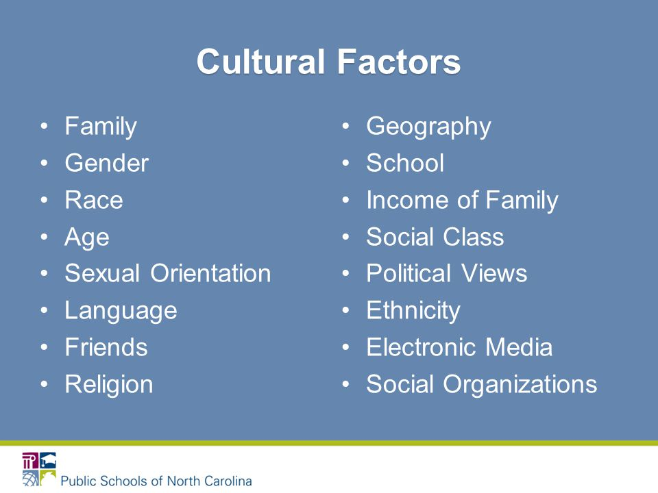 Cultural Factors Family Gender Race Age Sexual Orientation Language Friends Religion Geography School Income of Family Social Class Political Views Ethnicity Electronic Media Social Organizations