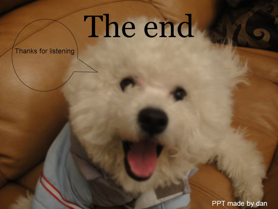 The end PPT made by dan Thanks for listening